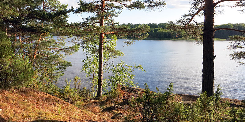 Остров Вахасари Ладожское озеро