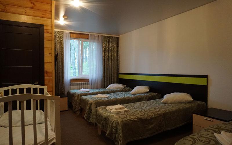Номер категории Семейный в парк отеле Донской лес Липецкая область