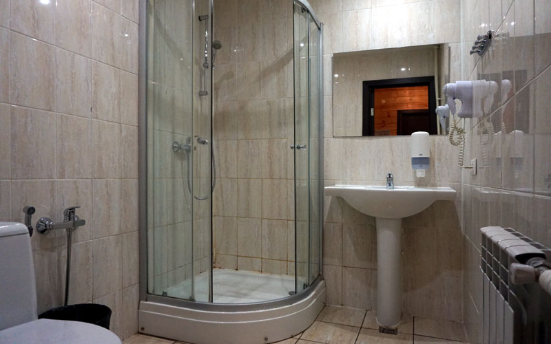 Санузел: туалет и душевая кабина, биде