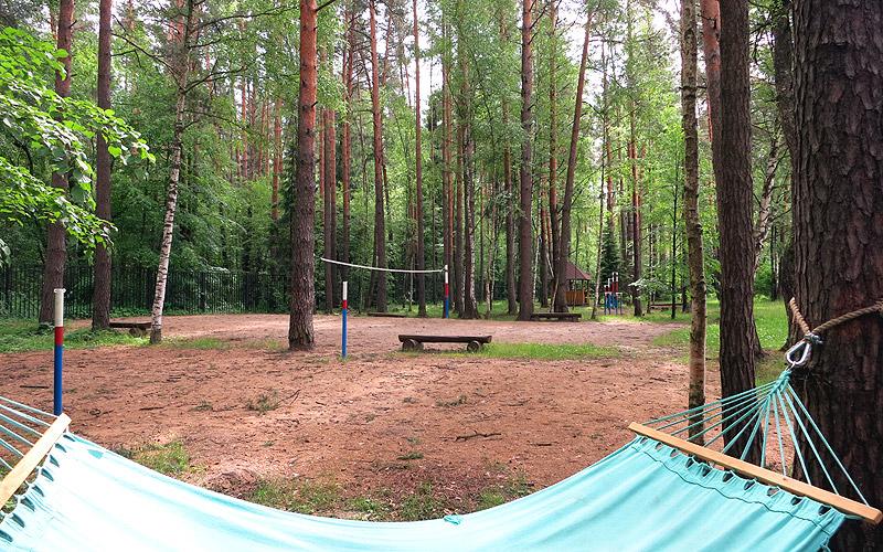 Волейбольная площадка в лесу