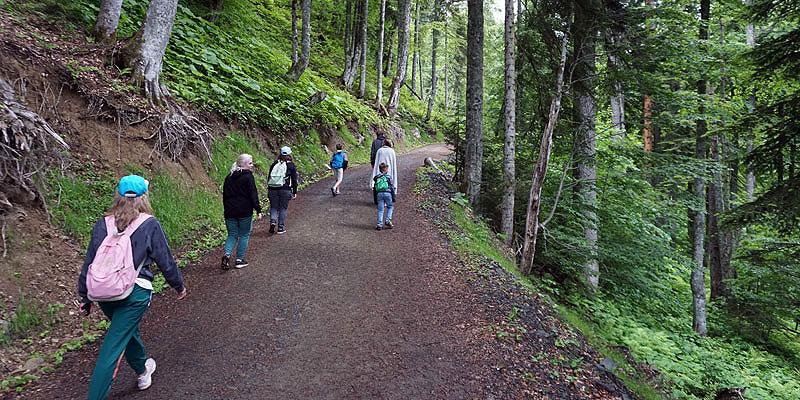 Прогулка по парку водопадов Менделиха