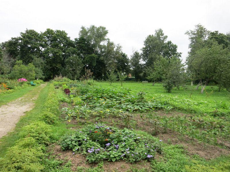 Огород Юг Франции