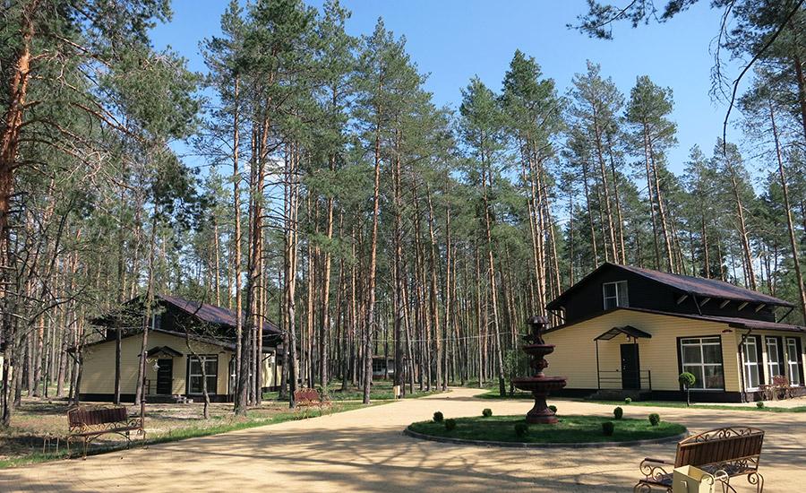 Территория базы отдыха Зеленый Бор