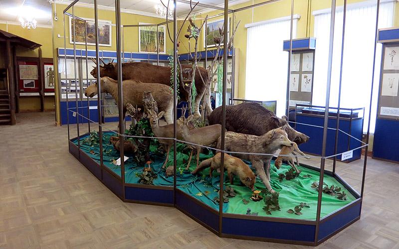 Краеведческий музей Старый Оскол