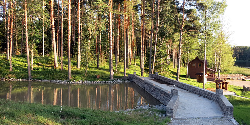 Территория базы отдыха Канапелька в Карелии