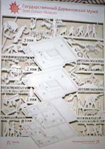 Схема расположения залов Дарвиновского музея