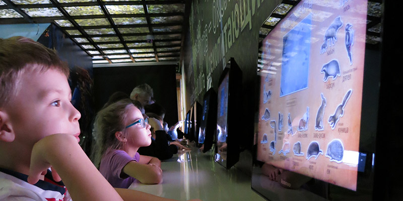 Современные интерактивные экскурсии для детей