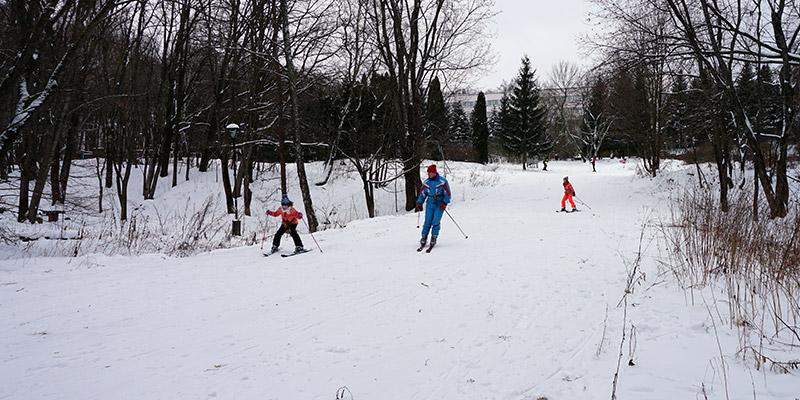 Трасса для горных лыж