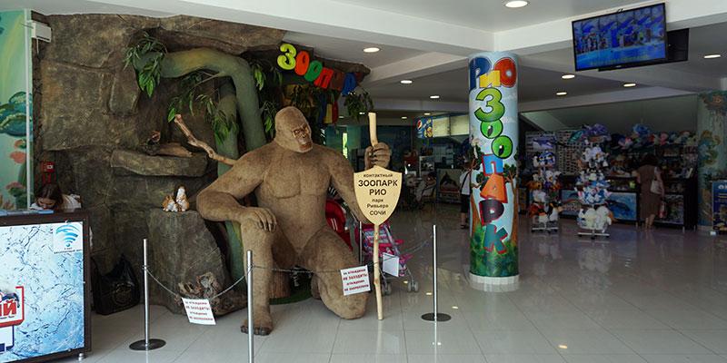 Контактный зоопарк Рио в Сочи