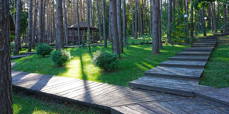 Деревянные тротуары на территории отеля Донской лес