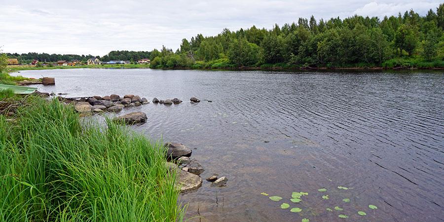 Набережная реки Шуя в Верховье