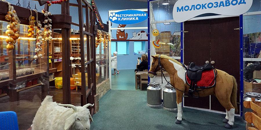 Профессия ветеринара в ветеринарной клинике