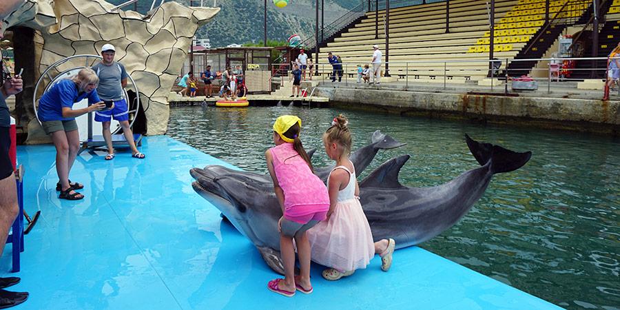 Фотография на память с дельфинами