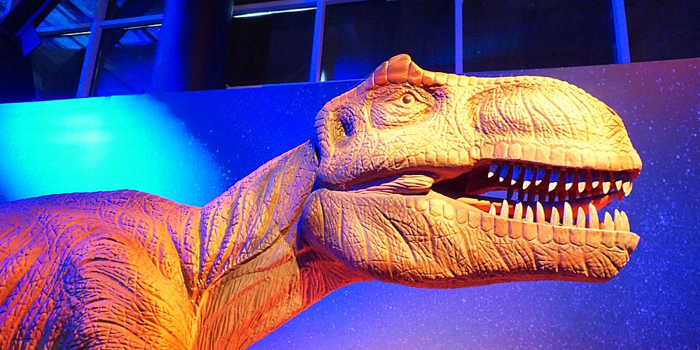 60 зубов в пасти тарбозавра