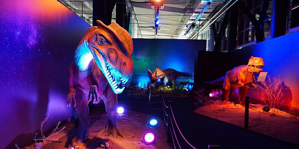 Дилофозавр тарбозавр и трицератопс в Диноклубе Сочи