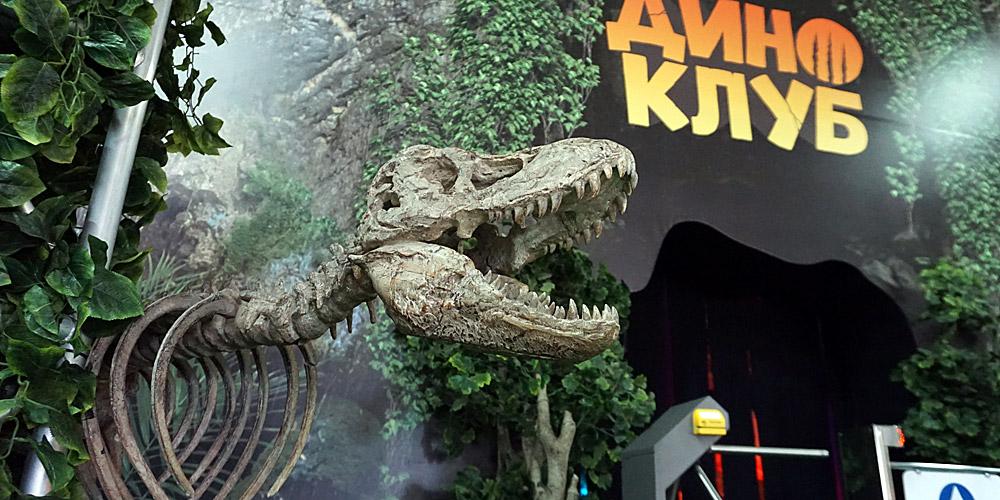 Вход в Парк динозавров Диноклуб