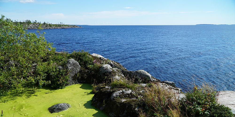Вид на Ладожское озеро с острова Ристисаари