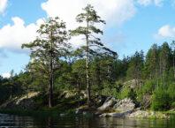 Экскурсия по проливу Киискансалми в Ладожском озере