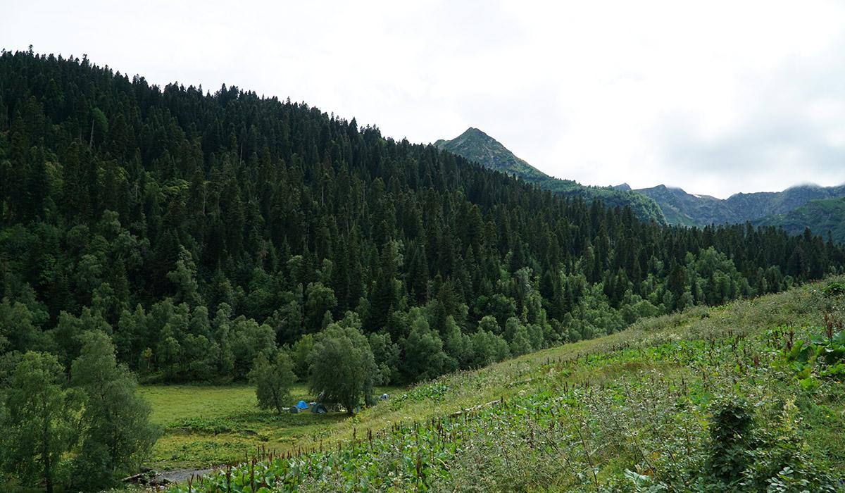Стоянка для палаток и лагеря в долине Малой Дукки Архыз около коша